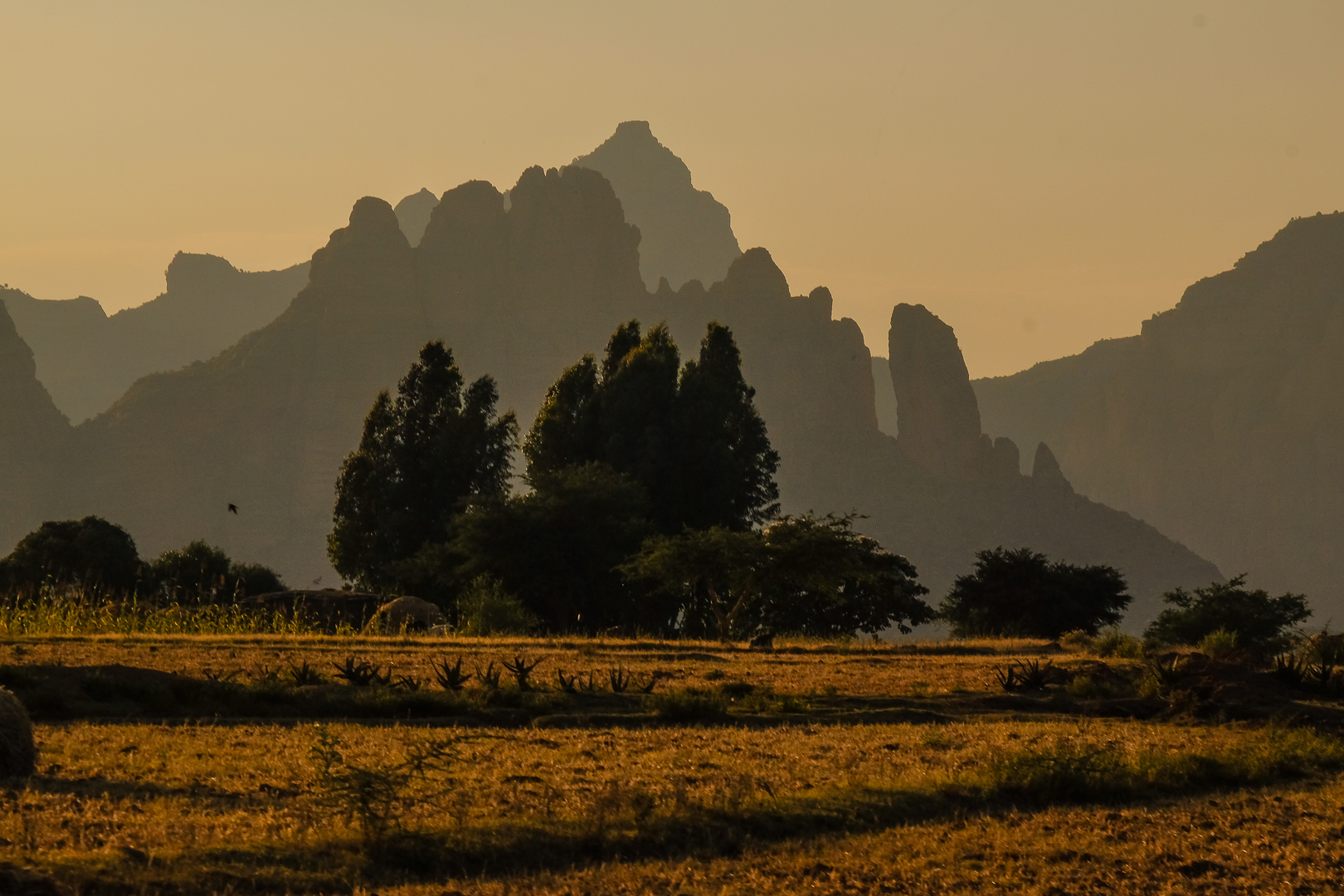 Ethiopia - an enchanting land